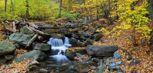 Autumn creek panorama Wall mural