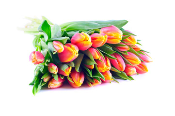 A bunch of fresh tulips with green leaves on white, isolated background
