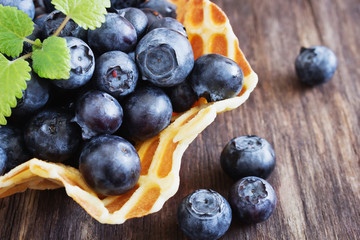 ripe forest blueberries