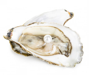 Oyster with pearl close-up isolated on a white background.