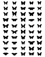 Black silhouettes of butterflies, vector