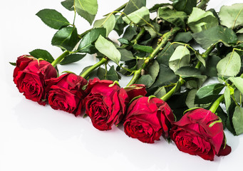 Flowers background with bouquet of red roses on white background