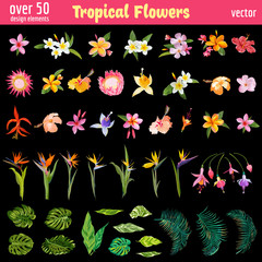 Tropical Flowers Deышgn Elements Set - Vintage Colorful Style