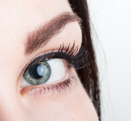 Close up view of woman eye