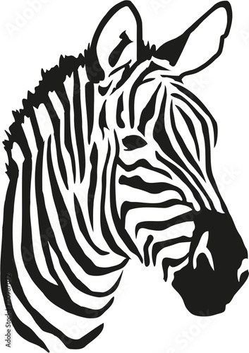 """Zebra head"" Stock image and royalty-free vector files on ..."