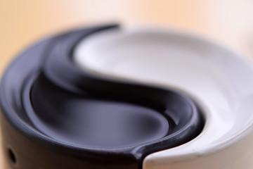 The Yin-Yang Symbol .