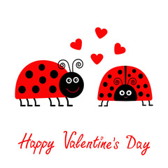 Happy Valentines Day. Love card. Two cartoon pink lady bug couple with hearts Flat design