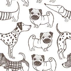 Dog background