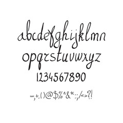 Vector handwritten brush alphabet on white background. Hand draw