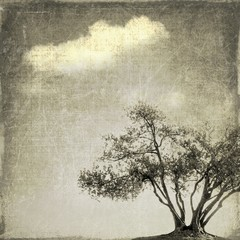 Surreal landscape with single tree in sepia tones