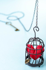 red heart in bird cage
