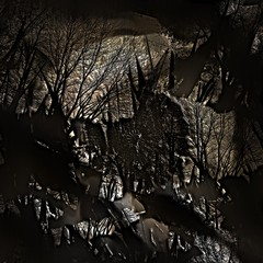An illustration of grunge forest on stone surface
