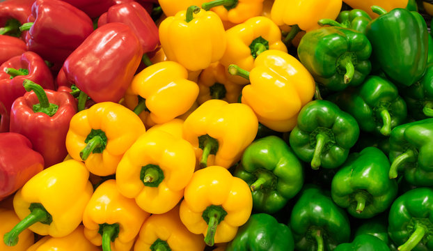 Red, yellow, and green bell peppers (capsicum) background