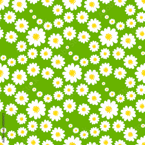 quotwhite daisies seamless pattern on a green background