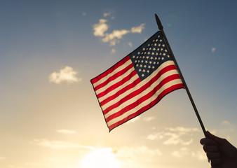 Hand holding a USA flag.