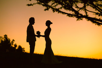 Beautiful silhouette of bride and groom holding hands.