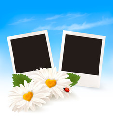 Happy Valentine's Day background. Two daisies and photos. Vector