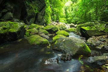 Printed kitchen splashbacks River Waterfall in Lamington National Park in Queensland, Australia.