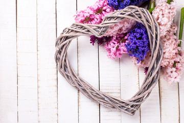 Postcard with fresh hyacinths flowers  and  big decorative  hear