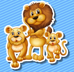 Lion family with little cub