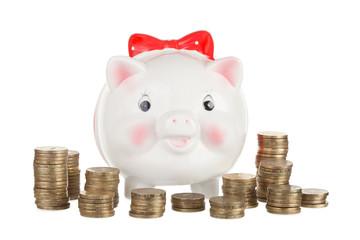 Pig piggy bank on gold coins