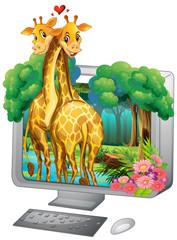 Computer screen with two giraffe hugging