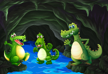 Three crocodile living in the cave