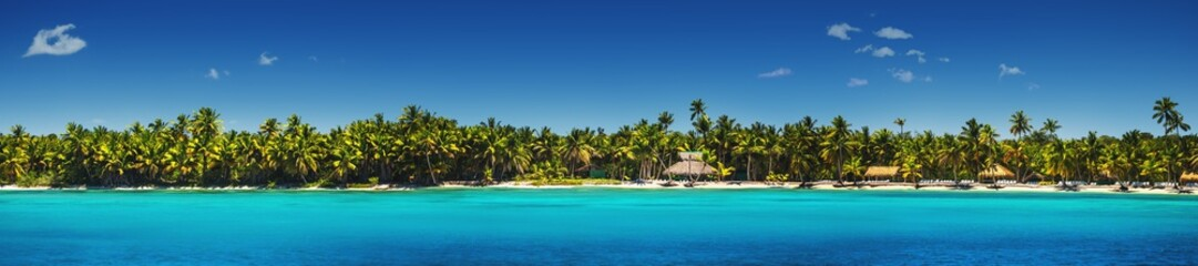 Panoramic view of Exotic Palm trees on the tropical beach.