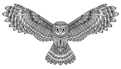 Vector hand drawn flying owl. Black and white zentangle art