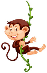 Little monkey climbing up the vine