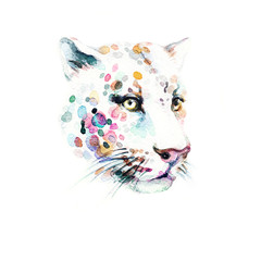 Leopard. Watercolor illustration
