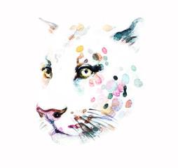 Leopard. Watercolor illustration