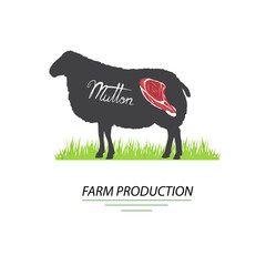 Illustration of sheep. Mutton and farm production, vector.