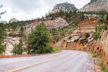 road through rocks of Zion National Park