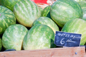 Watermelons with a Price Sign