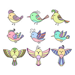 Set of 9 color cute birds in vector. Birds doodle collection.