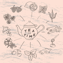 vintage hand drawn tea time and spices illustrations