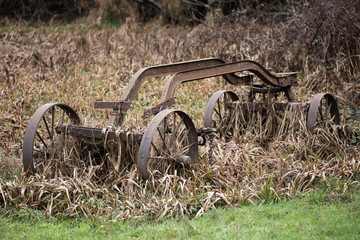 Overgrown and Rusty Cart, Color Image, USA