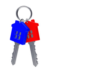 Bunch of colorful house-shape keys on a key ring isolated on white background