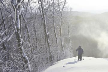 Caucasian man snowshoeing