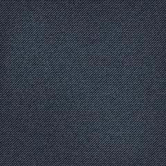 realistic denim blue jeans texture. vector background