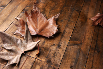Golden autumn leaves on wooden background