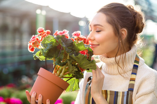 Inspired woman florist smelling flowers of begonia in greenhouse