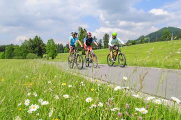 Fototapete - mit dem Mountainbike raus ins Grüne