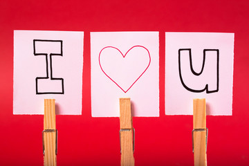 I Love you written on white pieces of paper clipped into 3 pegs