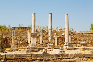 in  perge   construction asia  the roman temple