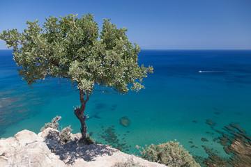 Photo sur Aluminium Chypre Cyprus Island sea coast