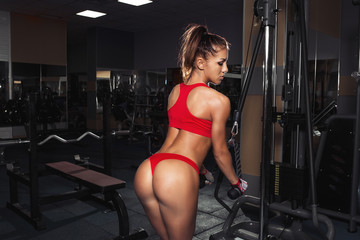 Sexy fitness brunette doing triceps exercises in the sport gym