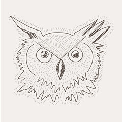 hand drawn vector sketch decorative owl illustration