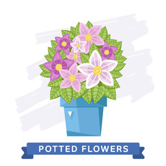 Spring flowers in pots. Vector flowers.